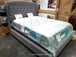 box spring full costco. Bed Twin Mattress Set Within Full Sealy Hawthorne At Costco Throughout Box Spring