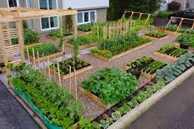 Small Kitchen Garden Backyard Kitchen Garden Backyard Design