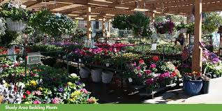 armstrong garden center locations. Plain Locations Armstrong Garden Centers Santa Monica View  And Center Locations O