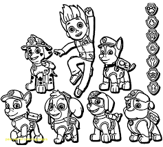 Paw Patrol Coloring Pages Robo Dog Xyzcoloring