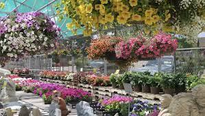 the best garden centers greenhouses