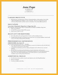 Career Objective For Finance Resume Physic Minimalistics Investment