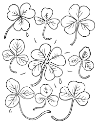 Small Picture Free Shamrock Coloring Page
