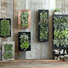 outdoor wall planters wall garden planter outdoor living wall planters wall garden planter ceramic wall planters