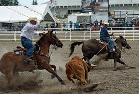 the rodeo team roping