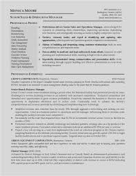 Download Sample Resume Year 12 Student New Can Resumes Be 2 Pages