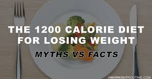 the 1200 calorie t for losing weight
