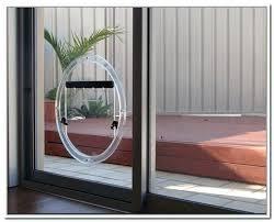 glass dog doors replace sliding glass door with dog door glass