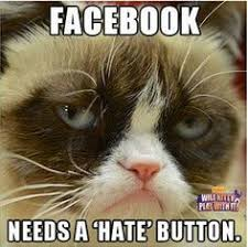 grumpy cat meme generator funny - Google Search | Grumpy Cat ... via Relatably.com