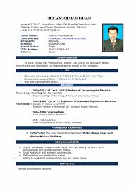 Resume Format Microsoft Word 2010 Best Professional Resume