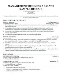 Program Analyst Resume Program Analyst Resume Big Resume Format