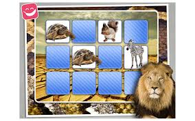 artland picture frames photography picture frame wildlife png image with transpa background