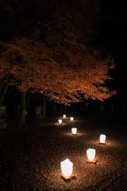 japanese garden lighting. garden lighting 1 little japanese gardens a
