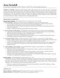 Internal Auditor Resume Internal Auditor Resume Internal Job Resume