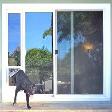 dog proof screen door cat screen door medium size of extra large pet door sliding glass