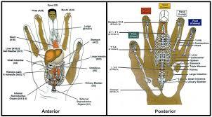 Korean Hand Therapy Micro Meridians By Dan Lobash