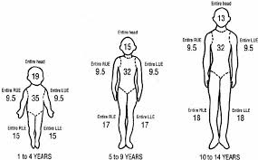 Rule Of 9 S Burn Chart Child Body Diagram For Estimation Of Total Burned Surface Area