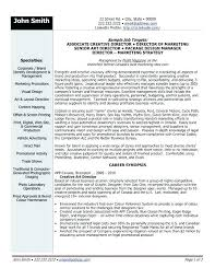 Awesome Resume Examples Delectable Creative Resume Examples Creative Director Resume Sample Creative