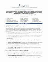 Resume Examples 2013 Best Of Marketing Resume Examples Sample