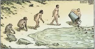 Resultado de imagem para evoluçao da vida