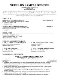 Nursing Resume That Would Get You Any Type Of Job Opportunity You ...