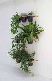 Hanging Vertical Garden hanging vertical garden 25 Indoor Garden Ideas