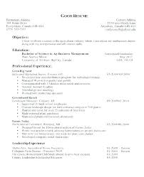 Student Objective Resume Resume Template Directory