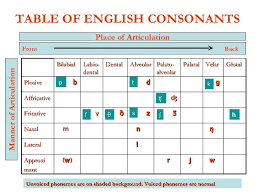 Manner Of Articulation Chart Place Manner And Voicing Of English Consonants Google