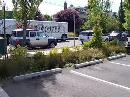 Parking Lot Stormwater Design Bioswale Adjacent To Parking Area Stormwater Runoff Sheet