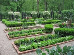 Small Picture 269 best Growing your own images on Pinterest Vegetable garden