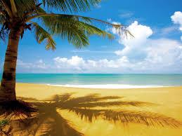 beautiful beach scenes. Contemporary Scenes Beautiful Beach Scene 1600x1200 With Scenes R