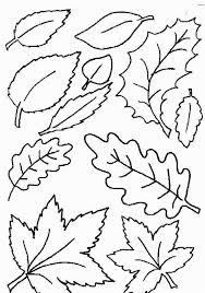 Leaf Pictures To Color And Printll