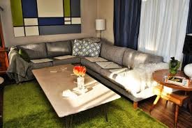 How to keep your pets off the furniture…kind of – Home In Disarray