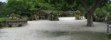 bonsai garden in the morikami museum and japanese gardens