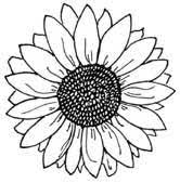 Free Wood Burning Patterns Delectable Sunflower Coloring Pages To Print Unique Beginner Wood Burning