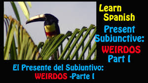 Learn Spanish How To Use The Present Subjunctive With Weirdos