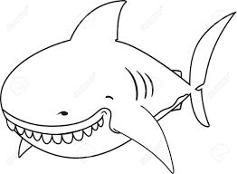 Dr Le Mignon Regardant Grand Requin Blanc Livre De Coloriage Clip