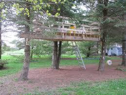 simple tree platforms. Beautiful Simple Small  On Simple Tree Platforms M