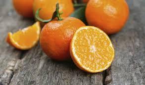 Výsledek obrázku pro pomeranč