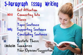paragraph essay writing expert essay writers 5 paragraph essay writing