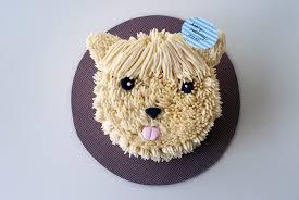 Birthday cakes for dogs vancouver ~ Birthday cakes for dogs vancouver ~ Hairy pup birthday cake coco cake land cake tutorials cake