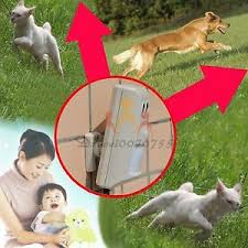cat repellent for garden. Image Is Loading Electric-Infrared-Ultrasonic-expel-Banish-Dog-Cat-Repellent - Cat Repellent For Garden