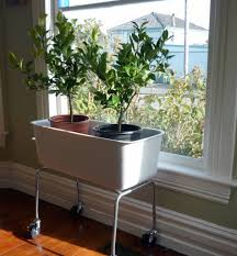 container. Source: Gardenrant. This indoor planter ...