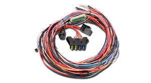 universal programmable ems 4 wiring harnesses aem Headlight Wiring Diagram universal programmable ems 4 comprehensive wiring