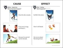 Casue And Effect Comprehending Cause Effect