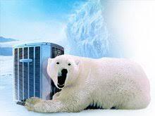 polar bear air conditioning.  Air In Polar Bear Air Conditioning