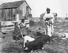 reconstruction era african americans essay << custom paper reconstruction era african americans essay