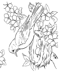 Small Picture Bird Coloring Pages for Adults Page of a bird in Spring with