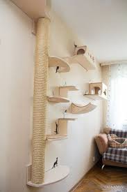 cat wall shelves
