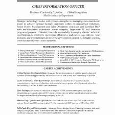 Marketing Resume Summary New Project Coordinator Resume Summary
